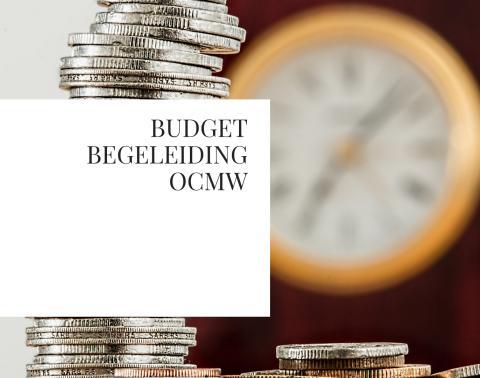 budgetbegeleiding